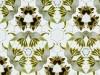 cambium-digital-collage-2013