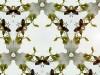 cortex-digital-collage-2013-